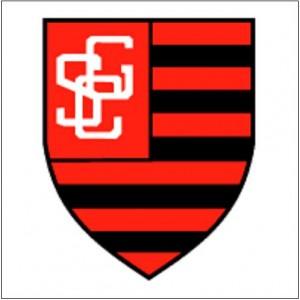Assistir-Guarany-de-Sobral-x-Botafogo-PB-AO-VIVO-ONLINE-23-01-2014